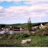 bulldozed-house-490x351
